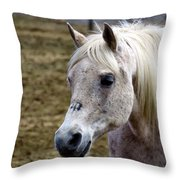 Magical Beauty Throw Pillow