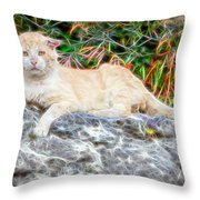 Magical Cat Throw Pillow