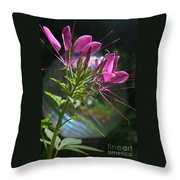Magical Cleome Throw Pillow