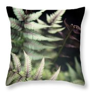 Magical Forest 1 Throw Pillow