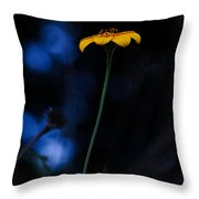 Magical Forest Arnica  Throw Pillow