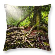 Magical Light On The Appalachian Trail Throw Pillow by Debra and Dave Vanderlaan