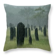 Magnetic Termite Mounds Throw Pillow by Bob Christopher