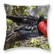 Magnificent Frigatebird Galapagos Throw Pillow