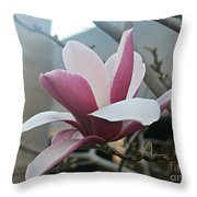 Magnificent Magnolia Blossom Throw Pillow