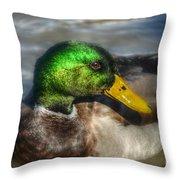 Magnificent Mallard Throw Pillow