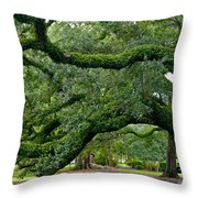 Magnificent Oak Alley Tree Throw Pillow