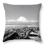Magnificent Oregon Throw Pillow