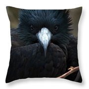 Magnificent Stare Throw Pillow