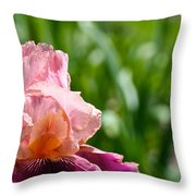 Magnificent Wine And Roses Throw Pillow