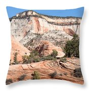 Magnificent Zion Throw Pillow