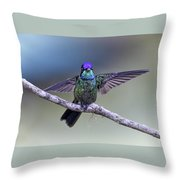 Magnificently Magnificent Hummer Throw Pillow
