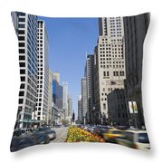Magnifiscent Mile Throw Pillow