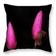 Magnolia After Dark Throw Pillow