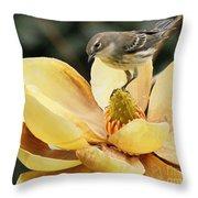 Magnolia And Warbler Photo Throw Pillow