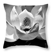 Magnolia Bloom 2bw Throw Pillow