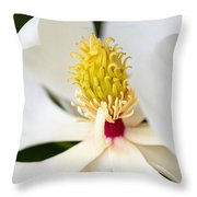 Magnolia Blossom 1 Throw Pillow