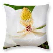 Magnolia Blossom 2 Throw Pillow