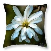 Magnolia Blossom Throw Pillow