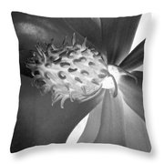Magnolia Blossom - Photopower 2476 Bw Throw Pillow