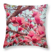 Magnolia Blossoms In Spring Throw Pillow