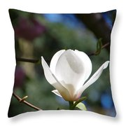 Magnolia Blossoms Throw Pillow