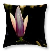 Magnolia Candle Throw Pillow
