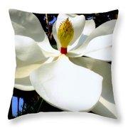 Magnolia Carousel Throw Pillow