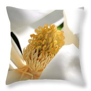 Magnolia Center Throw Pillow