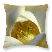 Magnolia Cloud Throw Pillow