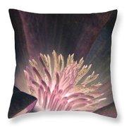 Magnolia Flower - Photopower 1824 Throw Pillow