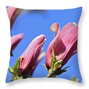 Magnolia Flowers Throw Pillow