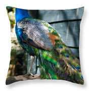 Magnolia Gardens Peacock Throw Pillow