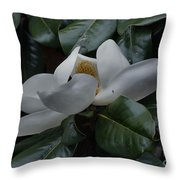 Magnolia In Full Bloom Throw Pillow