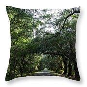 Magnolia Plantation Road Throw Pillow