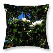 Magnolia Setting Throw Pillow