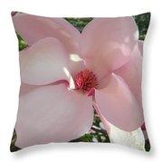 Magnolia Surprise Throw Pillow