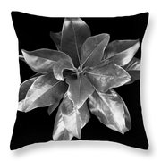 Magnolia Tree Leaves Throw Pillow