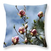 Magnolias In Bud Throw Pillow