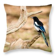 Magpie Throw Pillow