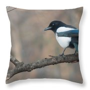 Magpie Perched On Twig Throw Pillow