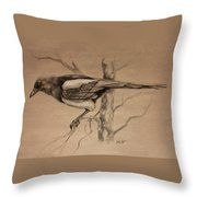 Magpie Sketch Throw Pillow