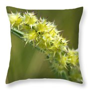 Main Point Of This Photograph Throw Pillow
