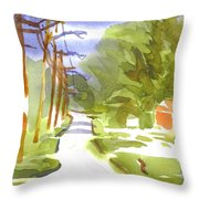Main Street On A Cloudy Summers Day Throw Pillow