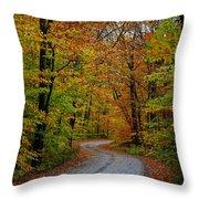 Journey Maine 55 Throw Pillow