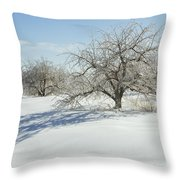 Maine Apple Trees Covered In Ice And Snow Throw Pillow