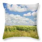 Maine Corn Field In Summer Photo Print Throw Pillow