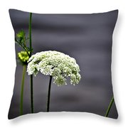 Maine Flora Throw Pillow