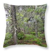 Maine Forest Throw Pillow