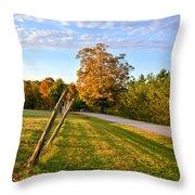 Maine Morning Throw Pillow